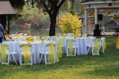 50th wedding anniversary outdoor